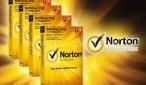 norton2014